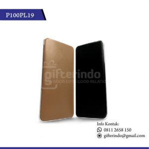 P100PL19 Powerbank 10000 mAh Custom Logo